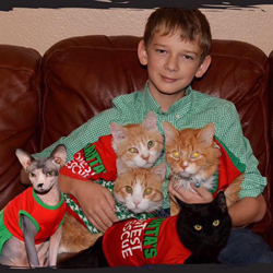 Pagnottas Kitty Crew