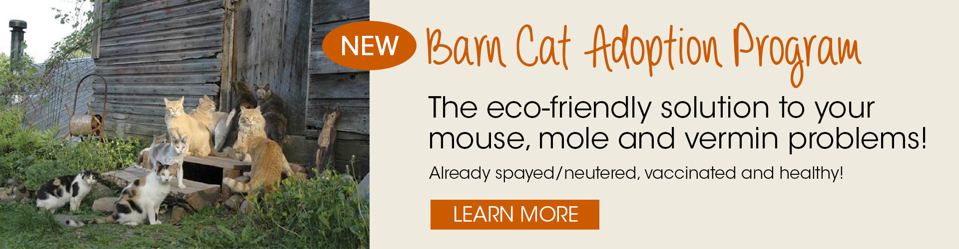 Barn Cat Adoption Program