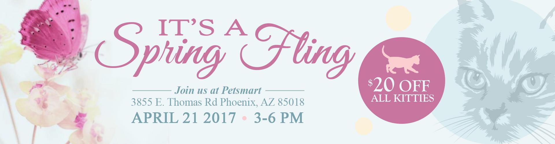 Spring Fling Cat Adoption Event